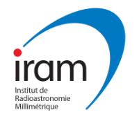 logo IRAM
